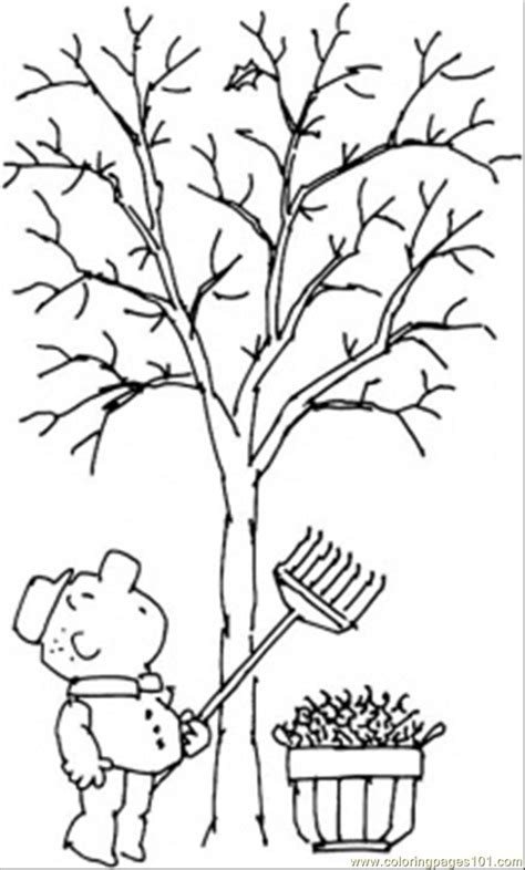 Coloring Pages Tree In Fall Natural World Gt Seasons Fall Tree Coloring Page