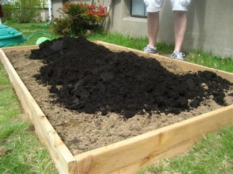 How To Make A Raised Garden Bed Cheap by Outdoor Gardening The Easy Way How To Build Raised