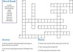 4th grade science worksheets amp free printables education com
