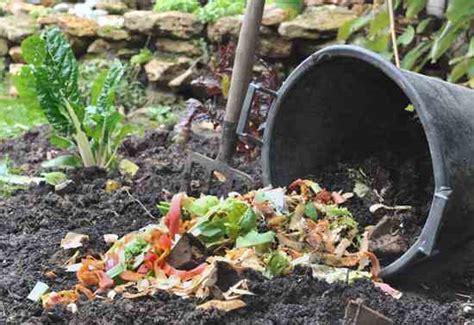 trench composting burying kitchen scraps in the garden