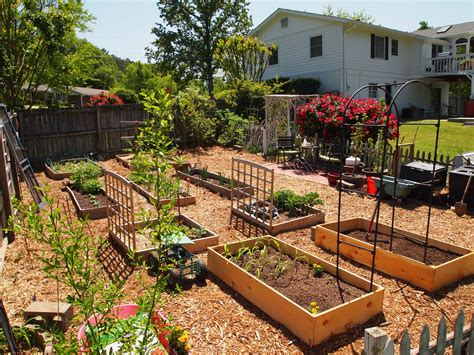 What Will My Garden Grow A Cultivated Nest Vegetable Garden Design
