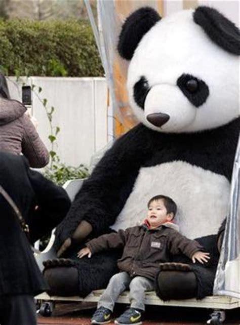 bear faced greed chinaorgcn