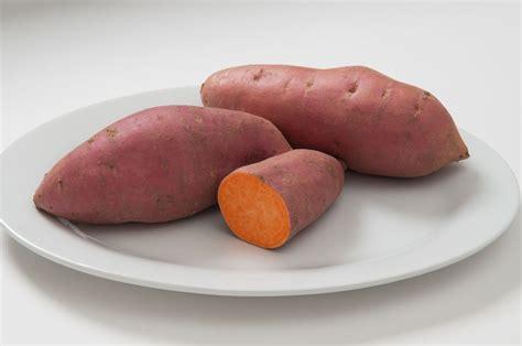 sweet potato farmville 2 wiki mahon yam organic sweet potato slips johnny s