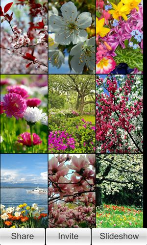 spring wallpapers slideshow hd blackberry forums