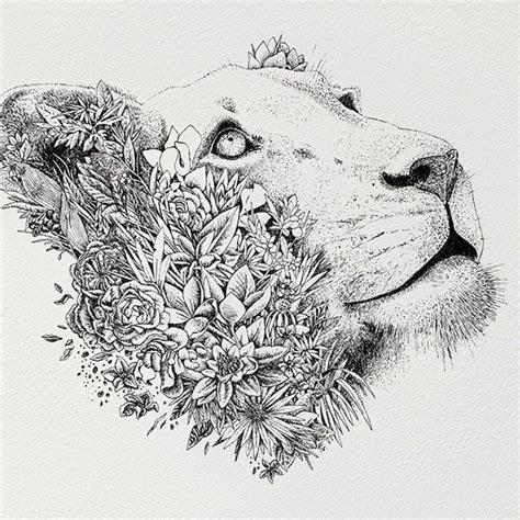 the 25 best lioness ideas best 25 lioness ideas on shoulder