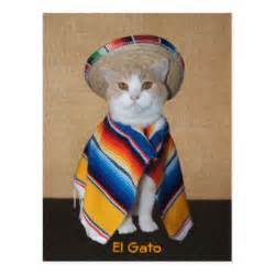 cats in sombreros gifts 600 gift ideas zazzle