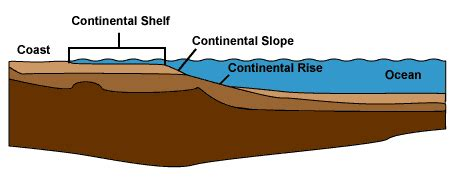 Continental Shelf Slope And Rise continental margin