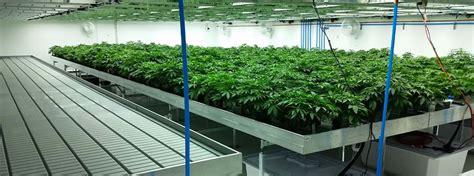 Free Floor Plan Generator marijuana facility commercial greenhouse structures