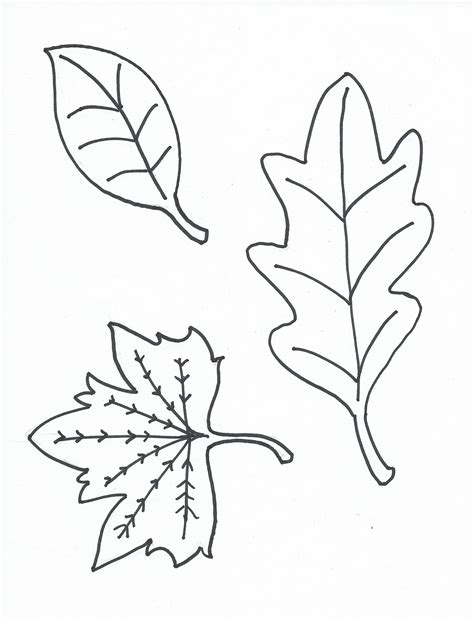 Free Printable Leaf Coloring Pages leaf coloring pages to print loving printable