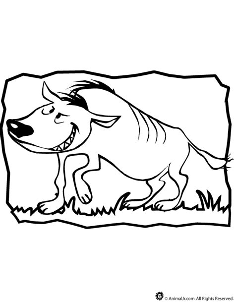 baby hyena coloring page hyena coloring page kids coloring
