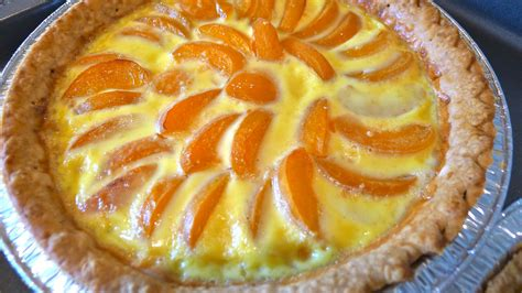 aprikosen kuchen food anjastudios