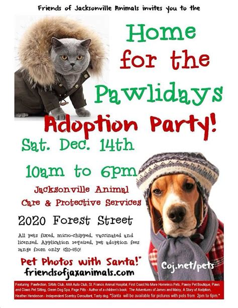 happy hour article pawlidays holiday pet adoption