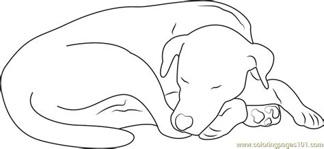 sleeping puppies coloring pages let sleeping dog coloring page free dog coloring pages