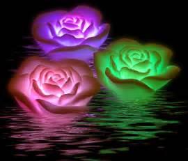 imagenes de rosas q brillan rosas con luces para un ba 241 o rom 225 ntico tuexperto com