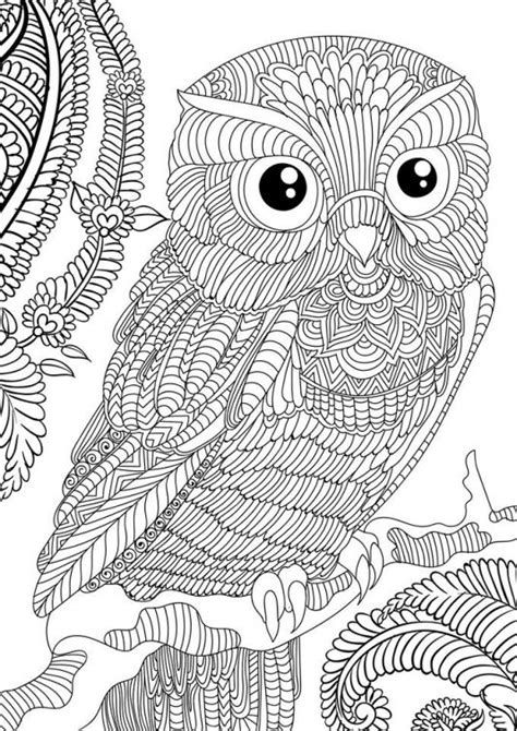 difficult pattern in c difficult owl adults printable coloring page free