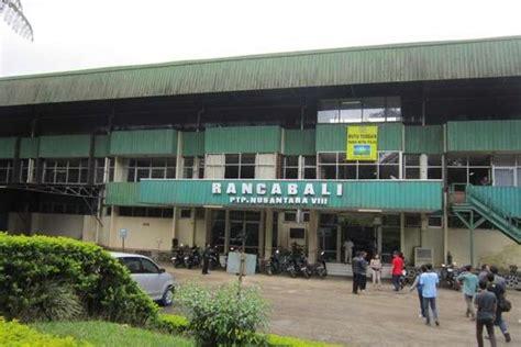 berkas pabrik teh rancabali jpg bahasa indonesia ensiklopedia bebas