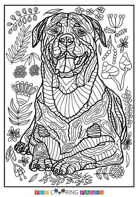 coloring pictures rottweiler dogs 44 best printables images on pinterest coloring books