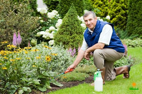 Www Gardeners How Gardeners Protect Their Back Neck And Knees When