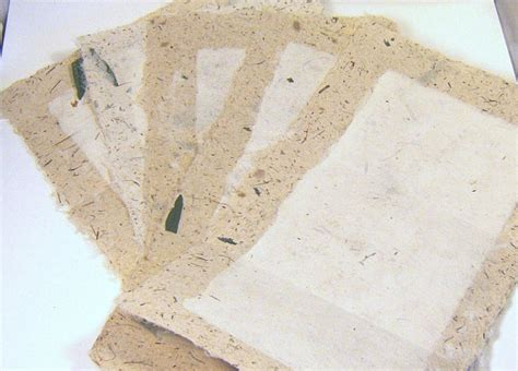 Handmade Stationery Paper - exclusive seeds and fern handmade paper stationery 5 sheets
