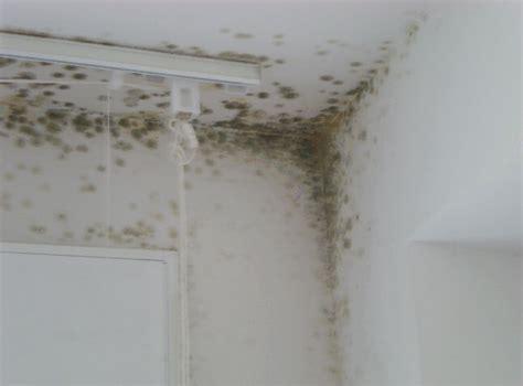Condensation Dans Une Maison 3555 by Conseils De Bricolage Comment Se D 233 Barrasser De L