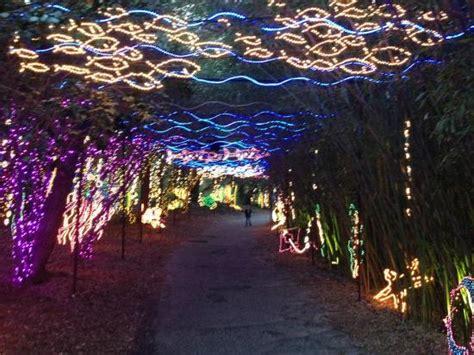 in lights event at bellingrath gardens picture