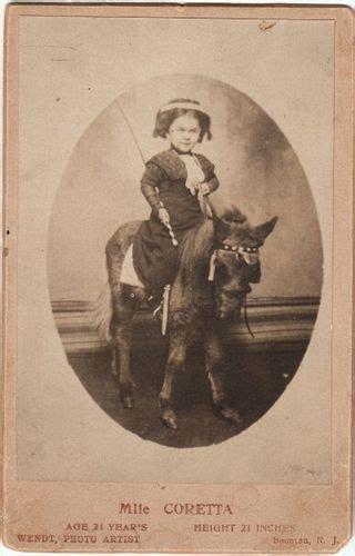 pony tailn 40s luminous lint phv photohistory visualizer