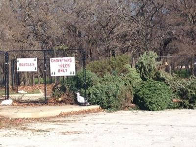 christmas trees in flower mound tx flower mound residents can recycle their trees after the holidays news