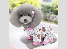 Cute Pet Dog Cotton Pajamas Clothes Puppy Cartoon Pattern Jumpsuit