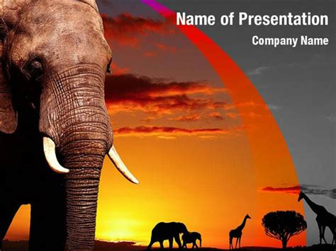 African Nature Powerpoint Templates African Nature Powerpoint Backgrounds Templates For Africa Powerpoint Template