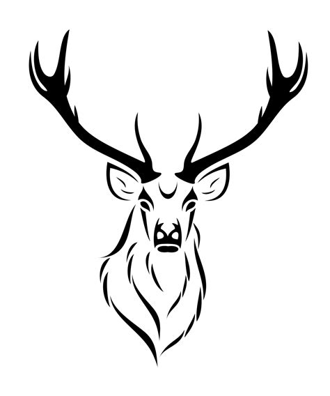 black and white deer drawing at getdrawings com free for