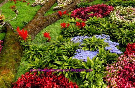 flower garden planner flower garden planner expert landscape flower garden