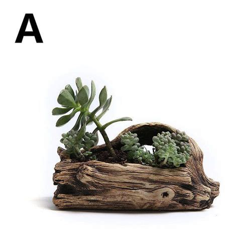 wood succulent planter root carving succulent planter