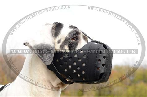 large muzzle great dane muzzle for k9 dogs large muzzle