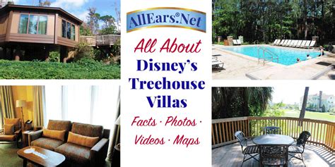 disney saratoga springs villas reviews treehouse villas disney vacation club resorts