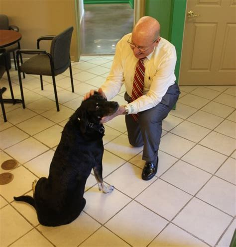 Take Your Dog to Work Day: One Little Rock insurance firm