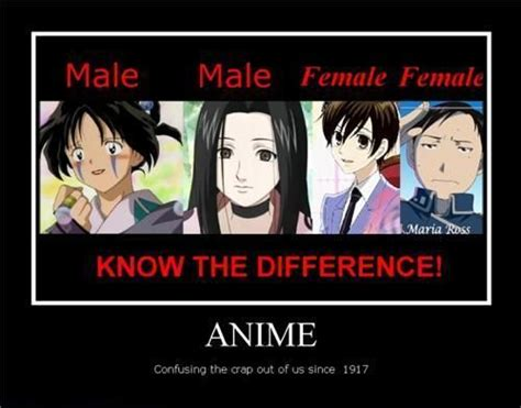 Funny Female Memes - 17 best images about anime memes on pinterest arnold