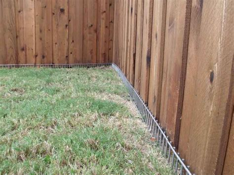 dog proof grass backyard dig defence xl model pinteres
