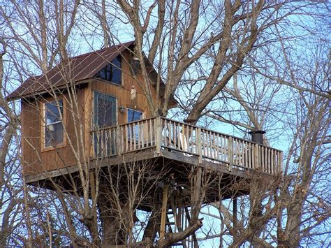 tree house rentals treehouse rentals treehouse vineyards