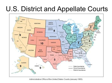 map us courts of appeals the judicial branch ppt