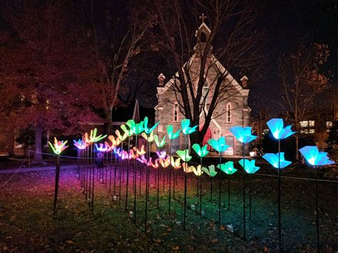 Bright Winter Lights At The Georgetown Glow Washington D C Georgetown Lights