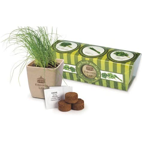 Eco Planters by Customized Growpot Eco Planter Herb 3 Pack Usimprints