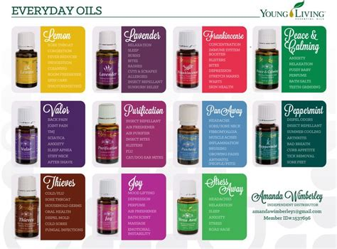 essential oils for everyday household using the best beginners guide book with 50 useful non toxic and time saving home made essential oils recipes essential oils book books 27 best yl images on living oils