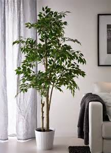 Artificial Plant Decoration Home The World S Catalog Of Ideas