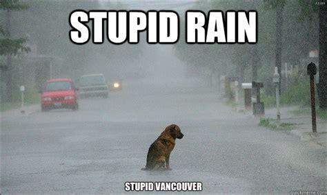 Funny Rain Memes - stupid rain stupid vancouver stupid vancouver dog