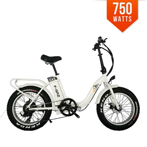 E Bike 750 Watt by Bpm F15rz 750w 13ah 48v Tire Electric E Bike Bicycle