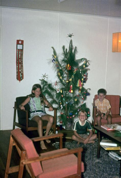 a tree 1972 100 a tree 1972 file nbrf projects and