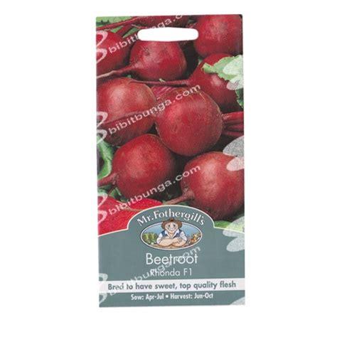 Promo Benih Selada Merah Lettuce Rosa Mr Fothergills Kemas benih beetroot rhonda f1 150 biji mr fothergills bibitbunga