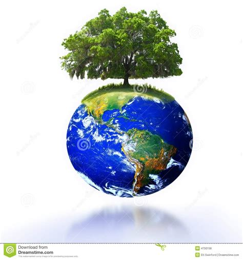 on earth tree on earth stock photo image of white industry spatial 4750158