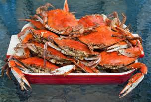 Savannah georgia king crabs, ontario king crabs for sale :: ~red and