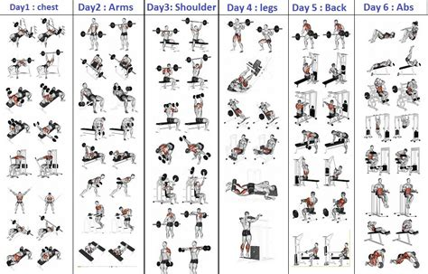 you must try this 5 days workout routine valentin bosioc